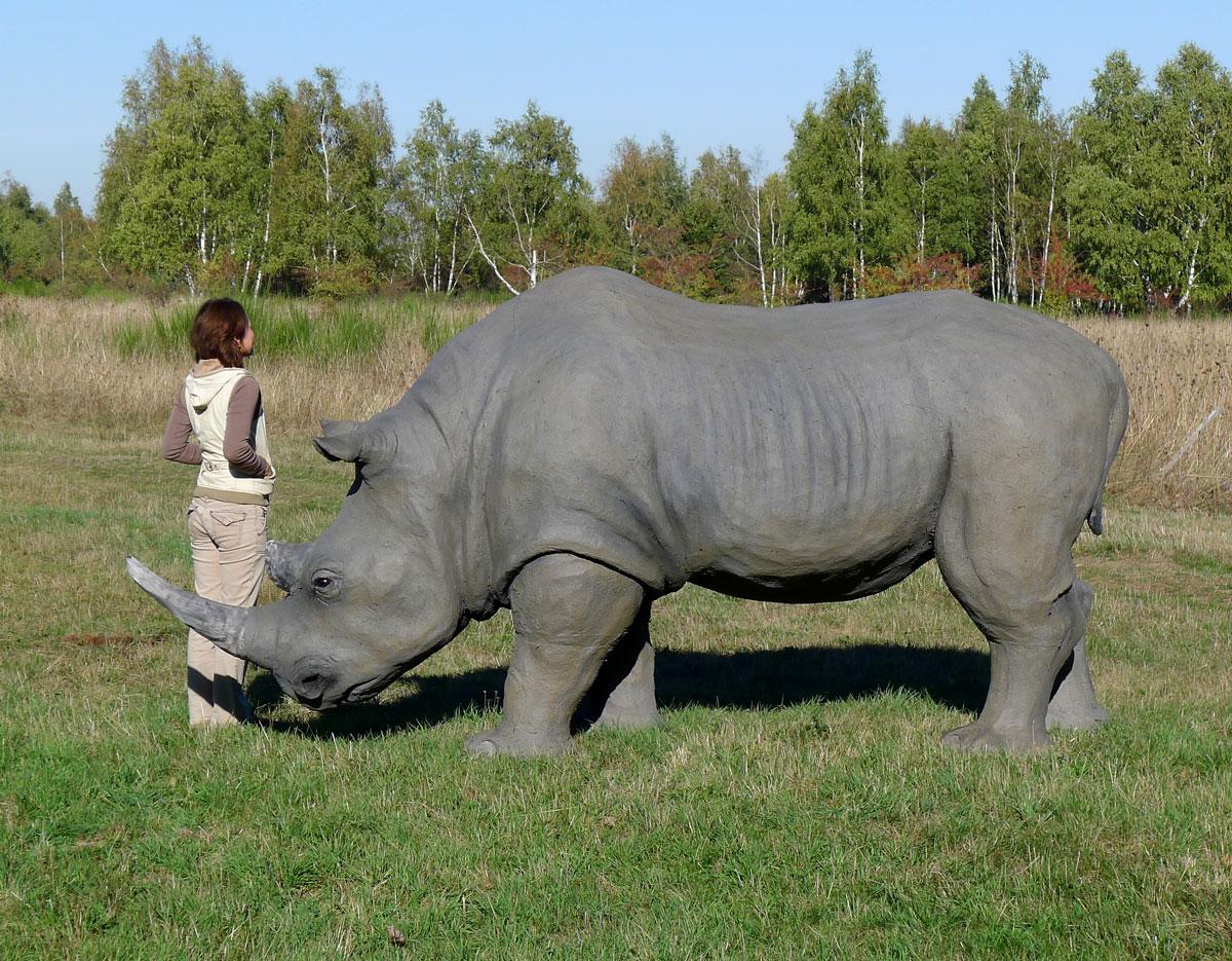 Wolfgang Herbst: 3D-Tiere für Bogensport, Dekoration, Werbung - tier.art Nashorn-0160
