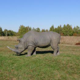 Wolfgang Herbst: 3D-Tiere für Bogensport, Dekoration, Werbung - tier.art - Nashorn